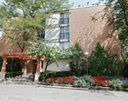 1833 Four Lakes Avenue Unit 2A, Lisle image