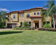 17822 Crystal Preserve Drive, Lutz image