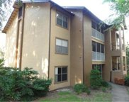 623 Dory Lane Unit 209, Altamonte Springs image