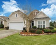 15116 Legend Oaks  Court, Indian Land image