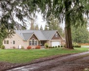 25920 SE 310th St, Black Diamond image