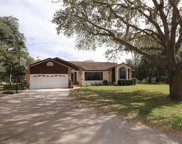 8805 Ogleby Creek Road, Myakka City image
