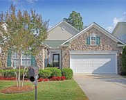 807  Platinum Drive, Fort Mill image