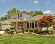 14515 Creek Crossing Drive, Orland Park image