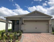 17317 Blazing Star Circle, Clermont image
