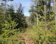Lot 119 Rich Pine Drive, Purlear image