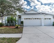 31136 Alchester Drive, Wesley Chapel image
