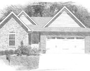 9213 Dragonfly Way, Strawberry Plains image