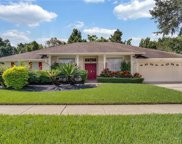 1136 Clinging Vine Place, Winter Springs image