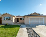 37048 Contra Costa Ave, Fremont image