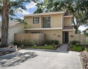 10519 Weeping Willow Place, Tampa image