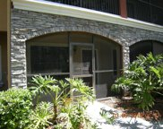 2152 Portofino Place Unit 9-2911, Palm Harbor image