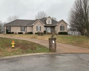 7321 Cox Run Court, Fairview image