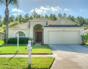 31211 Wrencrest Drive, Wesley Chapel image