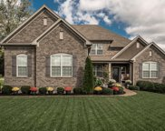 1008 Carlyle Ct, Hendersonville image