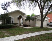 19148 Dove Creek Drive, Tampa image