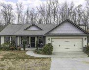 155 Autumn Hill Drive, Greer image
