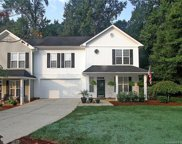 731  Torrey Pines Lane, Fort Mill image