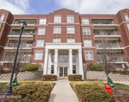 660 Prestwick Lane Unit 207, Wheeling image