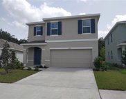 9039 Water Chestnut Drive, Temple Terrace image