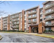 701 Lake Hinsdale Drive Unit 206, Willowbrook image