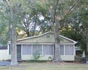 14209 Bayou Pines Drive, Coden image