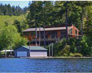 71112 MAJESTIC SHORES  RD, North Bend image