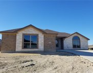 2527 Faux Pine Dr, Harker Heights image