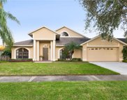 11419 Palm Pasture Drive, Tampa image