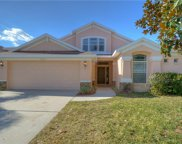 420 Summerlyn Drive, Valrico image