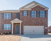 2078 Sunflower Drive 449, Spring Hill image