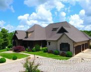 10062 County Road 9030, West Plains image