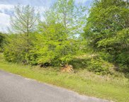 12821 W Woodhaven Dairy Road, Silverhill image