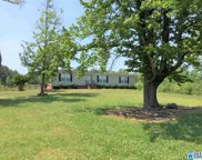 1691 Mountain Springs Rd, Ashville image
