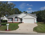 3030  Emerald Meadow Lane, Charlotte image