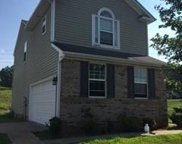 390  Anvil Draw Place, Rock Hill image