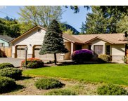 41832 MADRONE  ST, Springfield image