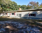 1170 STEAMBOAT ROAD, Shady Side image