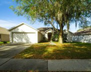 2340 Towering Oaks Circle, Seffner image