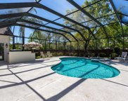 609 GOPHER CT, Jacksonville image