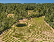 Spring Mountain Road, St. Helena image