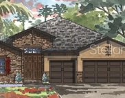 12829 Satin Lily Drive, Riverview image