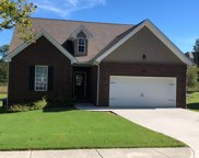 369 Green Meadows Lane, Lenoir City image