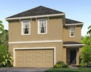 9030 Water Chestnut Drive, Tampa image