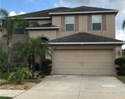 2411 Roanoke Springs Drive, Ruskin image