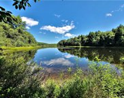 Beaver Lake  Road, Livingston Manor image