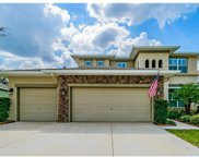 15705 Starling Water Drive, Lithia image