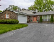 713 East Cunningham Drive, Palatine image