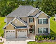 113 Blackwater Way, Moncks Corner image