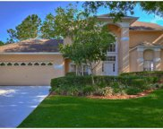 17905 Clear Lake Drive, Lutz image